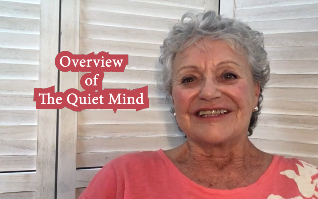 An Overview of Quiet Mind